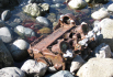 4-cylinder engine block rusting away on the beach.